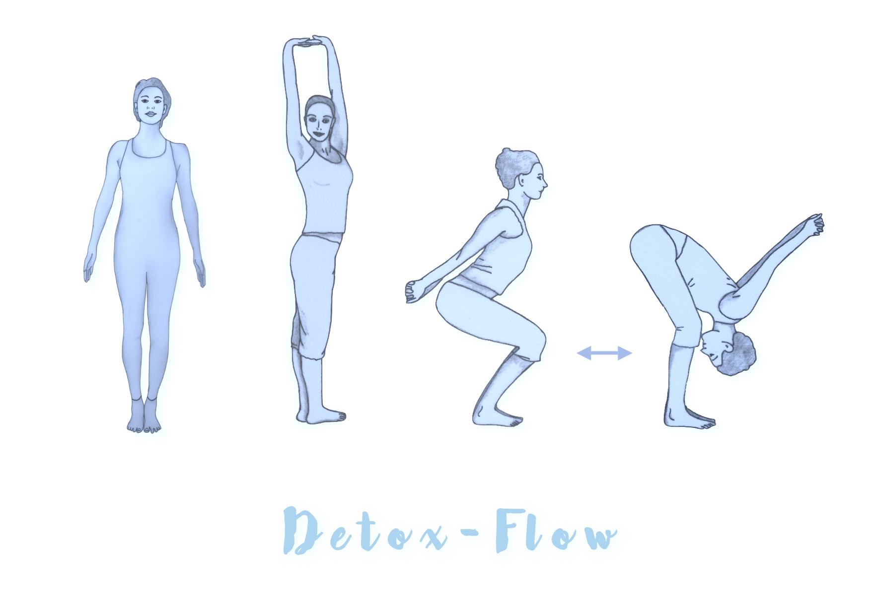 dieyogapraxis :: Detox-Flow